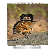 Leaving The Scene Grouse Shower Curtain