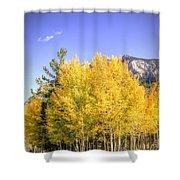 Lee Canyon Aspen Shower Curtain