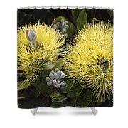 Lehua Mamo Blossom Shower Curtain