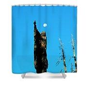 Lei Wang 07 Shower Curtain