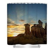Lei Wang 09 Shower Curtain