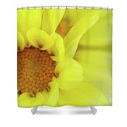 Lemon Chiffon Shower Curtain