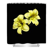 Lemon Lilies Shower Curtain