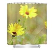 Lemon Symphony Dreams 4 Shower Curtain