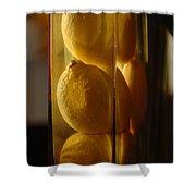 Lemon Vase Shower Curtain