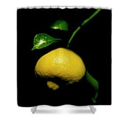Lemon With Leaves Shower Curtain