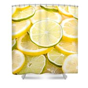 Lemons And Limes Abstract Shower Curtain