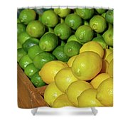 Lemons And Limes At Market Shower Curtain