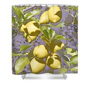 Lemons Purple Pastel Shower Curtain