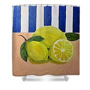 Lemons Shower Curtain