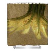 Lempa Shower Curtain