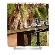 Lemur Couple Shower Curtain