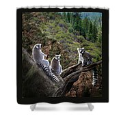 Lemur Family Shower Curtain