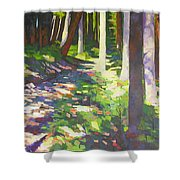 Lena Lake Trail I Shower Curtain