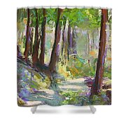 Lena Lake Trail Shadows Shower Curtain