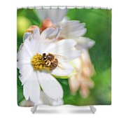 Lensbabee 1 Shower Curtain