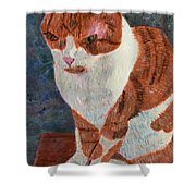 Leo The Cat Shower Curtain