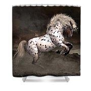 Leopard Appaloosa Shiloh Shower Curtain