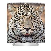 Leopard Close Up Shower Curtain
