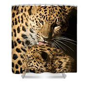 Leopard Cub Love Shower Curtain