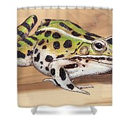 Leopard Frog No 1 Shower Curtain