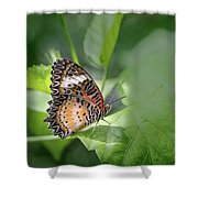 Leopard Lacewing Shower Curtain