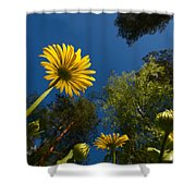 Leopard's Bane 9 Shower Curtain
