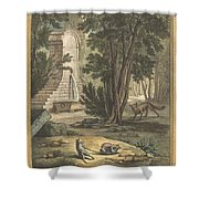 Les Deux Rats, Le Renard Et L'oeuf (two Rats,the Fox, And The Egg) Shower Curtain