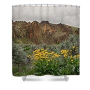 Leslie Gulch Sunflowers Shower Curtain