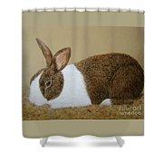 Les's Rabbit Shower Curtain
