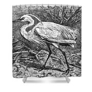 Lesser Egret Shower Curtain