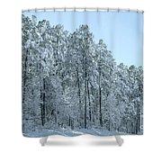 Let It Snow 3 Shower Curtain