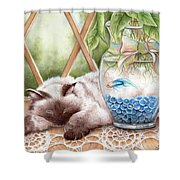 Let Sleeping Cats Lie Shower Curtain