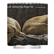 Let Sleeping Dogs Lie Shower Curtain