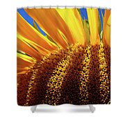 Let The Light Shine In Shower Curtain