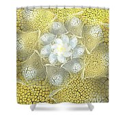 Let The Sunshine Shower Curtain