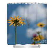 Let The Sunshine In... Shower Curtain