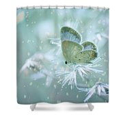 Let The Winter Gone Shower Curtain