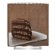 Let Us Eat Cake Shower Curtain by James W Johnson