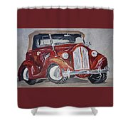 Let's Cruise Shower Curtain