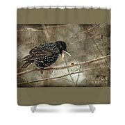 Let's Do Lunch Shower Curtain