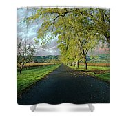 Let's Drive Through The Vineyard Shower Curtain