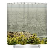 Let's Go Fishing Shower Curtain
