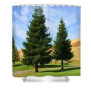 Let's Play Golf 010 Shower Curtain