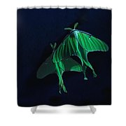 Let's Swim To The Moon Shower Curtain