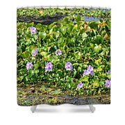 Lettuce Lake Flowers Shower Curtain