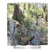 Lettuce Lake Swampland Shower Curtain