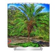 Leu Gardens Palm Shower Curtain