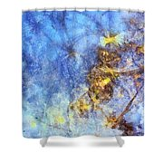 Leucospermous Mental Picture  Id 16098-052430-80880 Shower Curtain