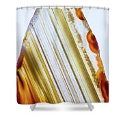 Level-5 Shower Curtain